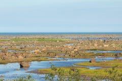 Hudson Bay Low Tide Stone Desert Royalty Free Stock Image