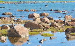 Hudson Bay Low Tide Stone Desert Stock Photography