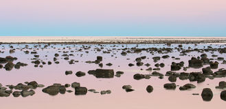 Hudson Bay Low Tide Stone Desert At Dusk Royalty Free Stock Photo