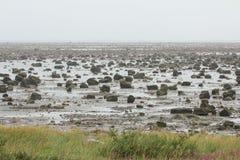 Hudson Bay Low Tide Stone Desert Royalty Free Stock Photography
