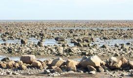 Hudson Bay Low Tide Stone Desert Royalty Free Stock Photo