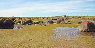 Hudson Bay Low Tide Stone Desert Royalty Free Stock Photo