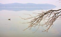 Hudson-Fluss lizenzfreie stockfotos