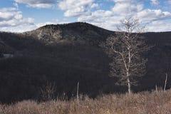 Hudson Highland Mountains av New York royaltyfria bilder