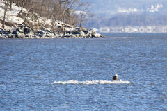 Hudson River in der Winter-Landschaft Lizenzfreies Stockfoto