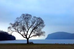 Hudson River Solace. Croton Point Park, Hudson River stock images