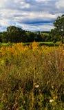 Hudson Valley-horizon met landbouwgrond en weiden op een wolk gevulde de zomerdag royalty-vrije stock foto's
