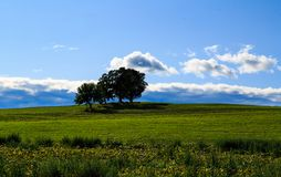 Hudson Valley skyline with farm land and meadows on a cloud filled summer day. Claverack NY area in the Hudson Valley looking at trees, rolling hills, green royalty free stock photography