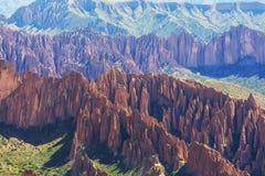Hudu в Боливии Стоковые Фото