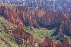 Hudu в Боливии Стоковые Изображения