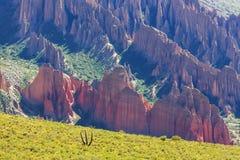 Hudu in Bolivia Royalty Free Stock Photos