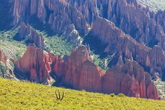Hudu em Bolívia Fotos de Stock Royalty Free