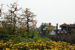 Hue Imperial City Vue sur une entrée de citadelle avec les fleurs jaunes des chrysanthèmes et les arbres de la pêche images libres de droits