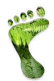 Huella ambiental. Imagen de archivo