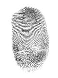 Huella dactilar negra aislada en blanco Imagenes de archivo