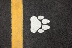 Huella del perro Fotos de archivo