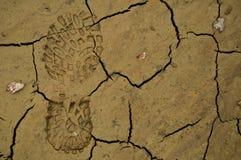 Huella del zapato en fango Imagen de archivo libre de regalías