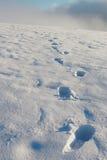 Huella en la nieve Foto de archivo libre de regalías