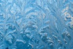 Huella en la nieve Huellas animales en - el fondo del invierno Foto de archivo libre de regalías
