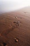 Huella en la playa Fotos de archivo