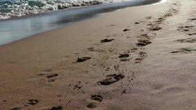Huella en la playa 4K almacen de metraje de vídeo