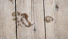 Huella en piso de madera Imágenes de archivo libres de regalías