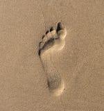 Huella en una arena de la playa Imagenes de archivo