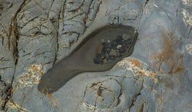 Huella natural Imagenes de archivo