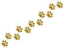 Huellas animales que van diagonalmente Fotos de archivo libres de regalías