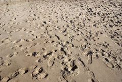 Huellas de la arena Fotos de archivo libres de regalías