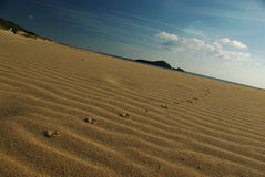 Huellas de la gaviota en la playa de Chia Foto de archivo libre de regalías