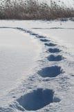 Huellas de la nieve Imágenes de archivo libres de regalías