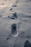 Huellas de la nieve Imagenes de archivo
