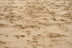 Huellas de la playa Imagen de archivo libre de regalías