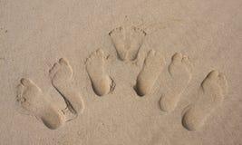 Huellas de una familia en la arena en la playa Foto de archivo libre de regalías