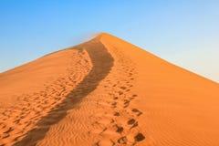 Huellas del desierto Imagen de archivo libre de regalías