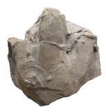 Huellas del dinosaurio fotografía de archivo libre de regalías