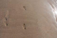 Huellas del padre y del hijo en la playa como fondo fotografía de archivo