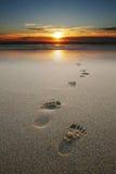 Huellas en arena en la playa Imagen de archivo libre de regalías