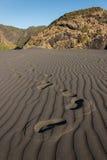 Huellas en arena volcánica Fotos de archivo libres de regalías