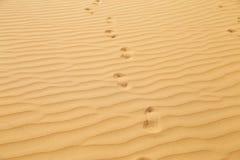 Huellas en desierto de la arena Imágenes de archivo libres de regalías
