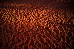 Huellas en el desierto Fotos de archivo libres de regalías