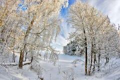 Huellas en el lago snow Foto de archivo libre de regalías