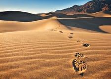 Huellas en la arena Imagen de archivo