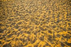 Huellas en la arena Fotografía de archivo