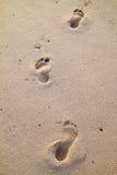 Huellas en la arena de la playa Imagen de archivo