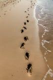 Huellas en la arena en la playa Imagen de archivo