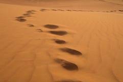Huellas en la duna de arena en al Khali, United Arab Emirates de la frotación ' foto de archivo