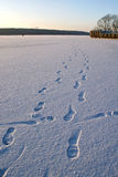Huellas en la nieve Fotografía de archivo