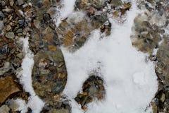 Huellas en la nieve a lo largo de un rastro alpino del barranco/de Provo, Utah de la roca Imágenes de archivo libres de regalías